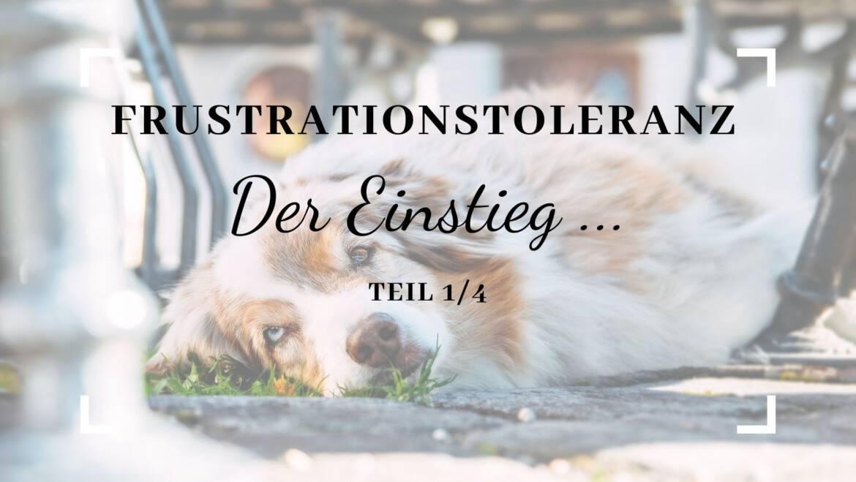 Frustrationstoleranz – Der Einstieg – Teil 1/4