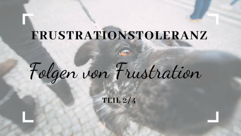 Frustrationstoleranz – Folgen von Frustration – Teil 2/4