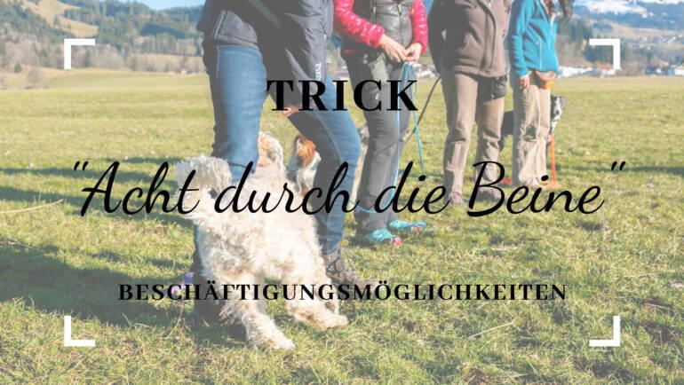 """Trick """" Acht durch die Beine"""""""