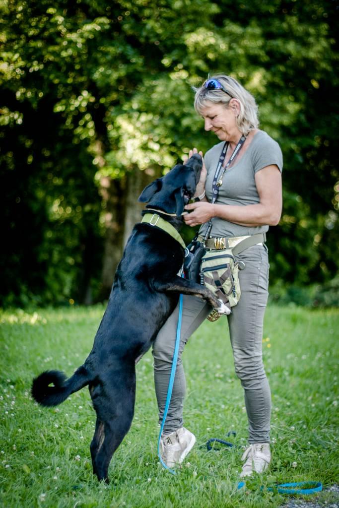 """""""So viel Lob wie möglich – so wenig Tadel wie nötig"""" Eure Hundeschule im Allgäu – mit Verständnis und Klarheit für den Hund – zu einem erfolgreichen und friedvollen Miteinander!"""