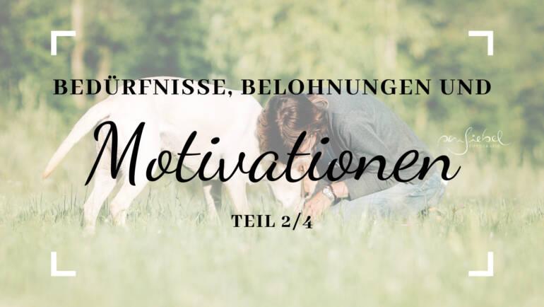 Bedürfnisse, Belohnungen und Motivation – Teil 2/4