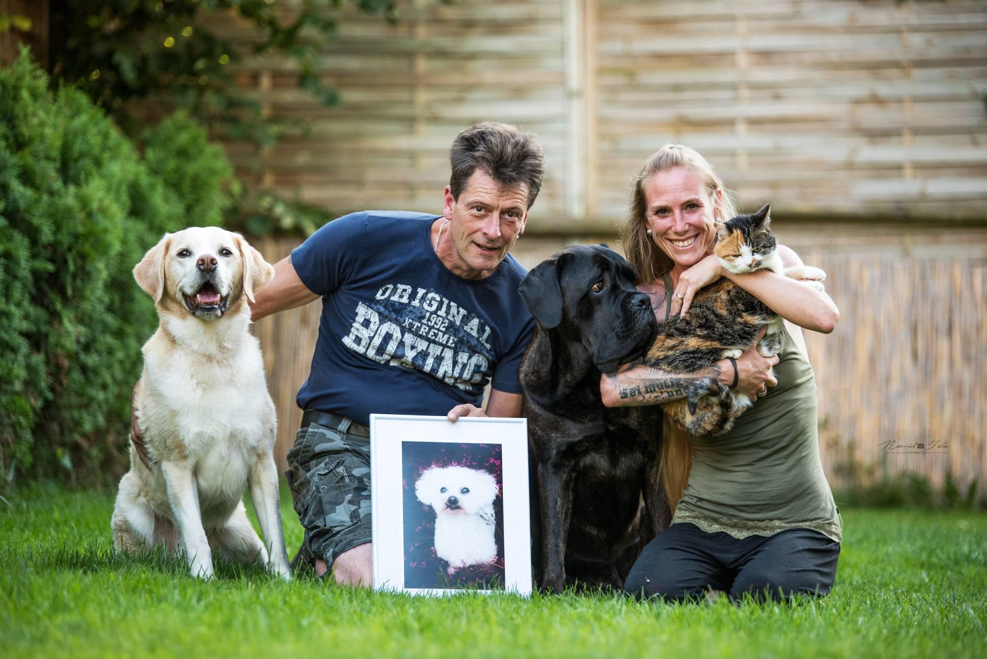 Hundeschule Allgäu - Zusammen zum Ziel