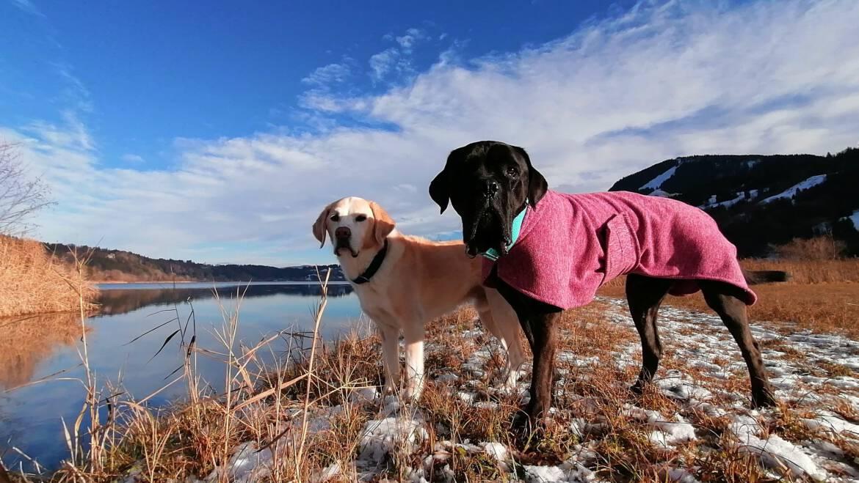 Ideen für deinen Spaziergang – PLATZ und STEH