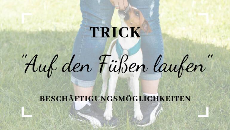 """Trick """"Auf den Füßen laufen"""""""