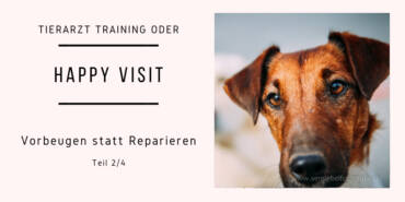 Tierarzt Training oder auch Happy Visit Teil 2/4