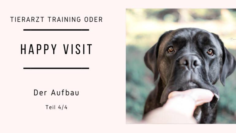 Tierarzt Training oder auch Happy Visit Teil 4/4